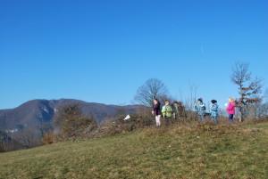 Na travniku