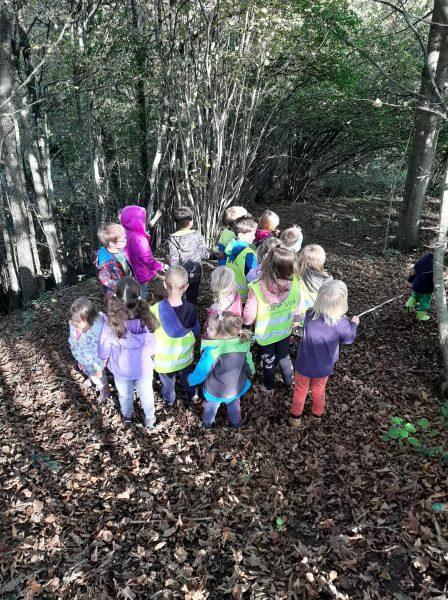 Naravoslovni dan v gozdu